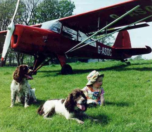 Auster Tugmaster Gen Dogs